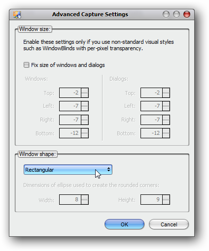 WinSnap Advanced Settings - WindowsBlinds Leo Style